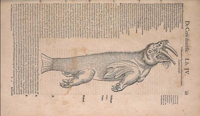 Conrad Gessner - Historia animalium