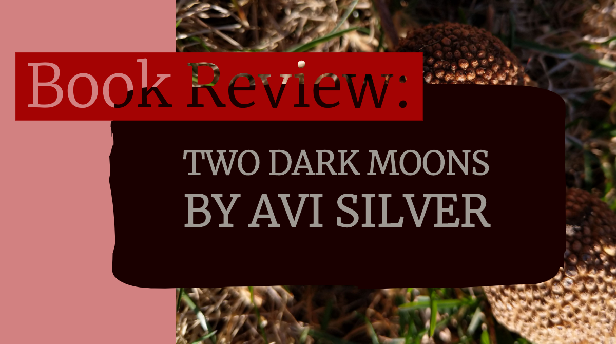 Trials of Communication and Triumphs of Empathy, a review of Avi Silver's Two Dark Moons